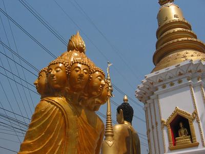 Wat Pa Ngew