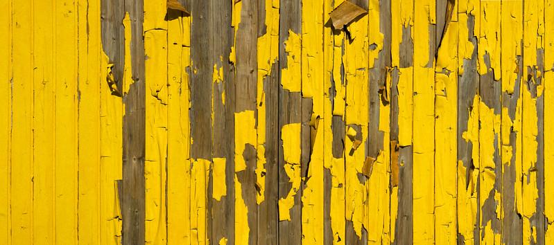 Holz + Farbe