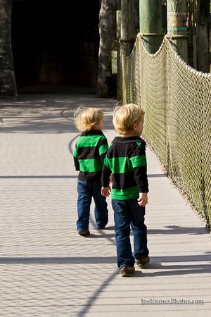 At the Brevard Zoo 1/22/2011