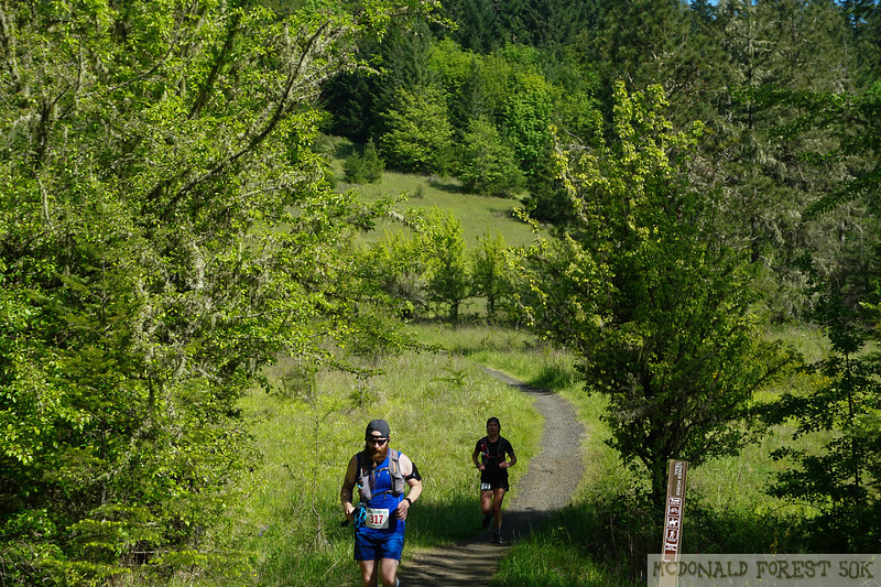 20190504.gw.mac forest 50K (56 of 123).jpg