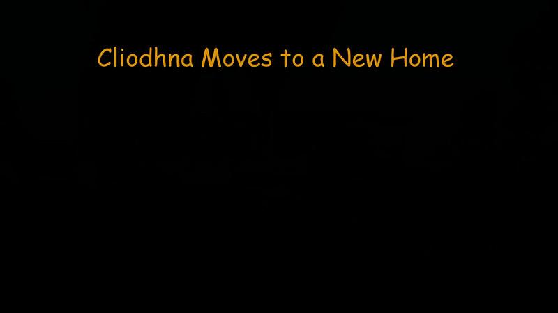 161229 Cliodhna Moves to a New Home - Segment 1