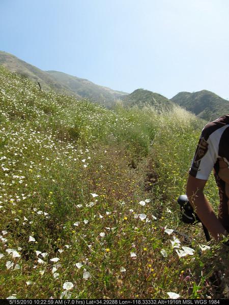 20100515020-Doc Larson Trail Recon.JPG
