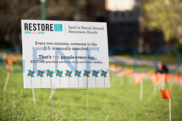Sexual Assault Awareness Flag Planting