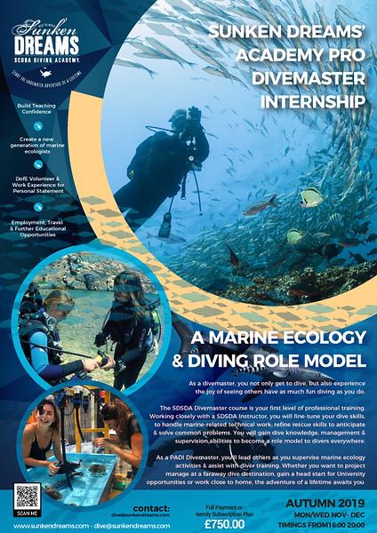 SDSDA-Divemaster-Internship-Info.jpg