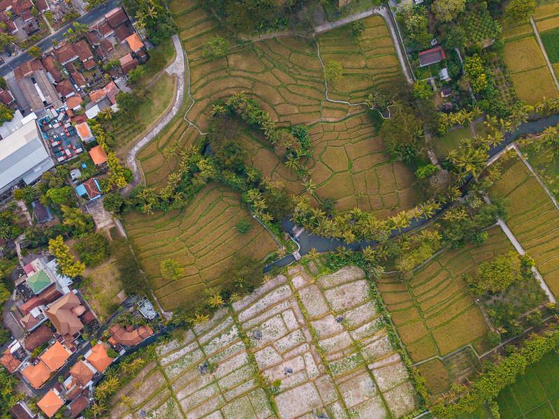 Bali (178).jpg