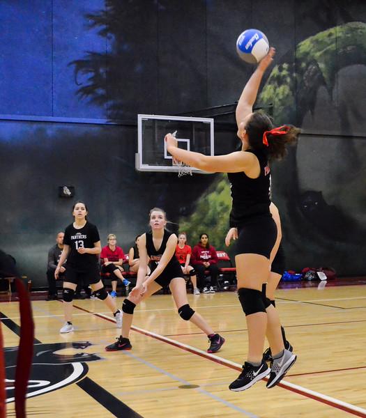 Sr Girls Volleyball 2017 (9 of 68).jpg