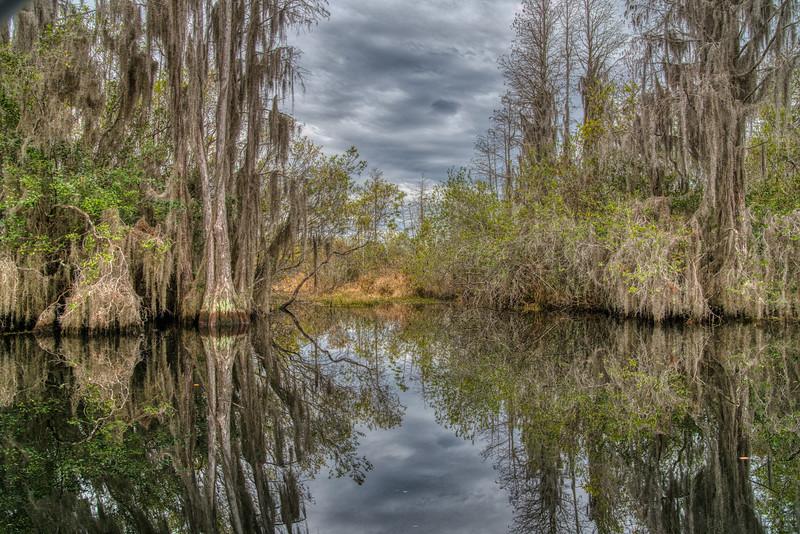 Okeefenokee Swamp 2020-16.jpg