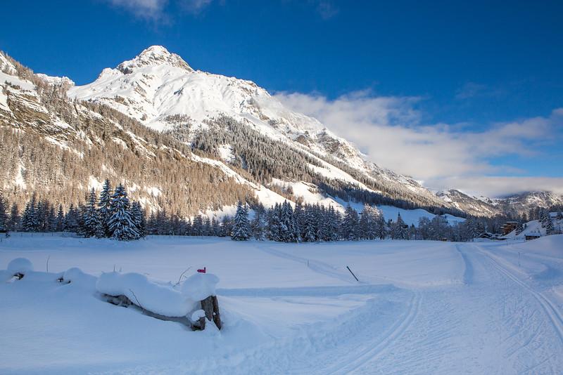 Rheinwald-Winter-D-Aebli-050.jpg