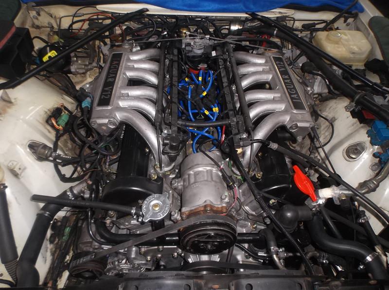 DSCF7955.JPG