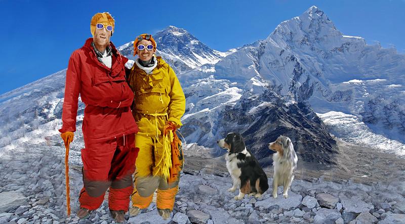 Everest6X2_650x360.jpg