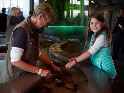 Monterey Aquarium 2015