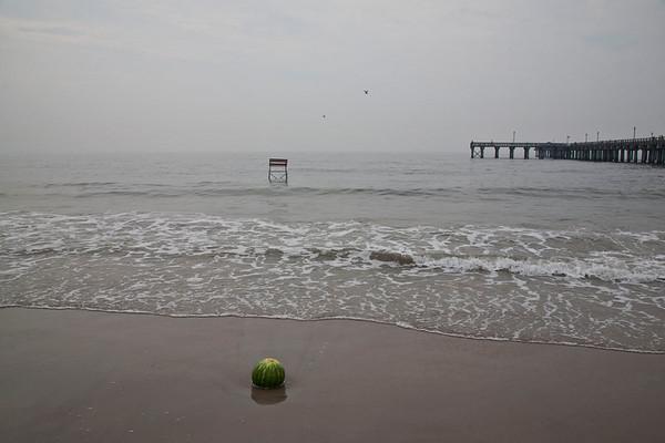 { Coney Island: Capturing the Spirit (2010) }