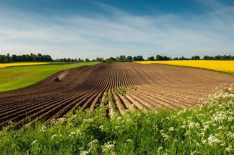 Farming, Kaszuby Region