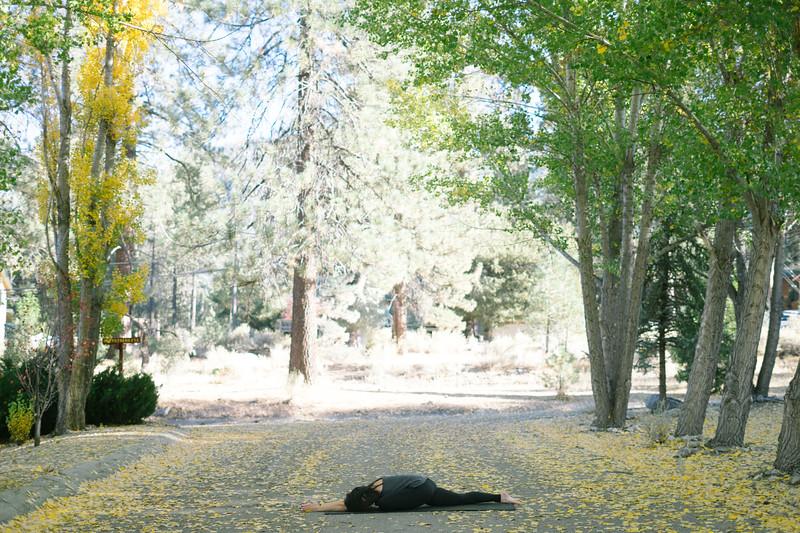 Toni Kuhn Yoga Photography Pine Mountain Club-42.jpg