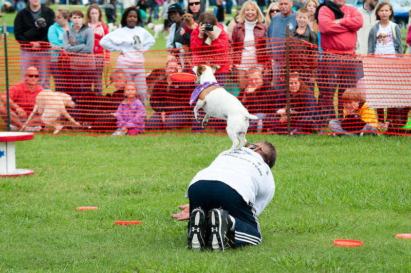 2011 Bark in the Park-134.jpg
