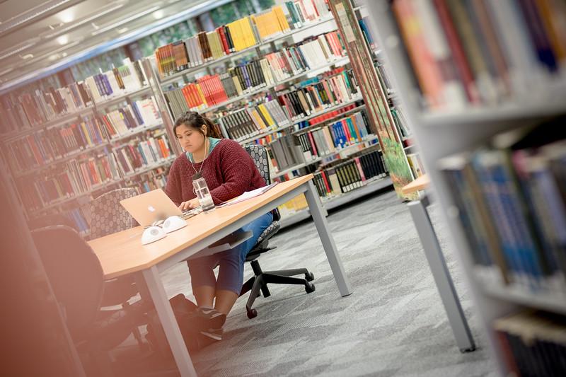 Library_0037.jpg
