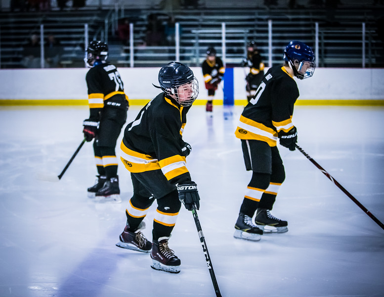 Bruins2-4.jpg