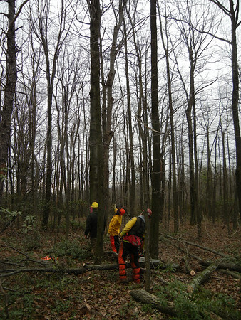 DCNR DISTRICT 18 SAW COURSE 12-17-2011 SECOND MOUNTAIN STATE FORREST