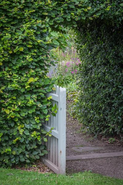 Hob Green garden-67.jpg