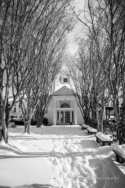 VA_Snow_ART_JOP-0163.jpg