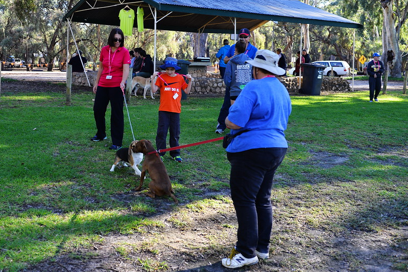 Million Paws Walk 2017 Berri