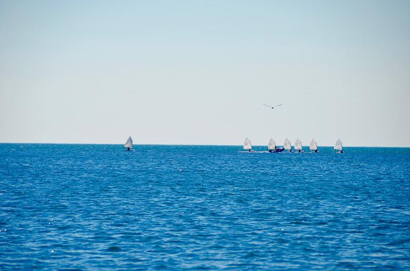 Gulf of Trieste.