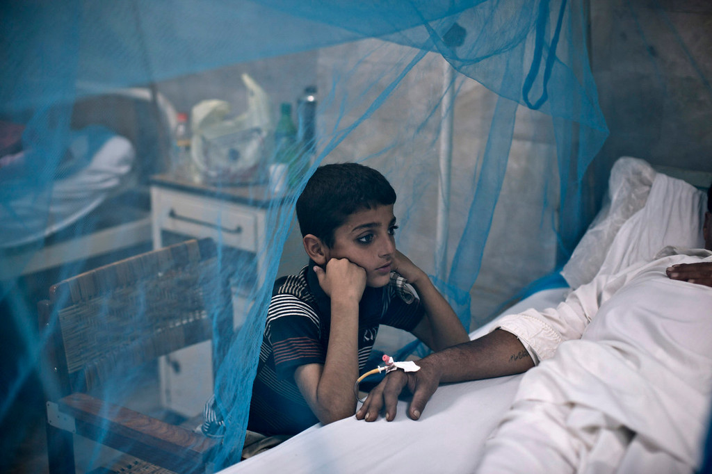 . A Pakistani boy looks after his father whose suffering from the mosquito-borne disease, dengue fever, while laying in bed covered with a net at an isolation ward of a hospital in Rawalpindi, Pakistan, Thursday, Oct. 24, 2013. Dengue, a flu-like illness, is spread by the Aedes mosquito and spikes during the annual monsoons in Pakistan, when the rains leave puddles of stagnant water where the insects breed. (AP Photo/Muhammed Muheisen)