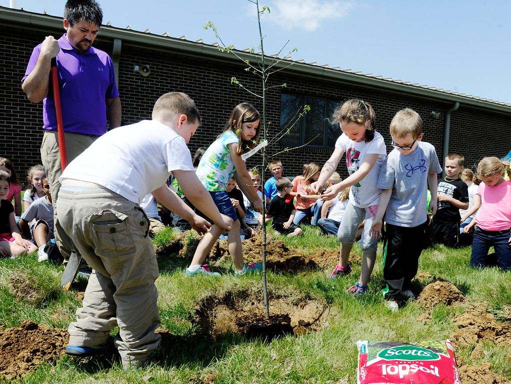 . First-graders at Henderson\'s Cairo Elementary, as part of a service learning project and Earth Day celebration, place handfuls of dirt around a oak tree they planted at the school Tuesday, April 22, 2014, in Henderson, Ky. (AP Photo/The Gleaner, Mike Lawrence)