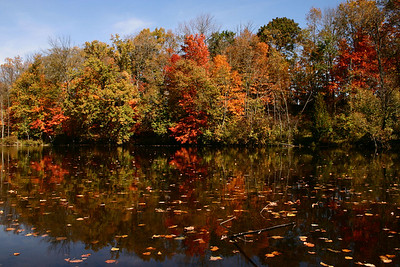 Flat_River_Canoeing