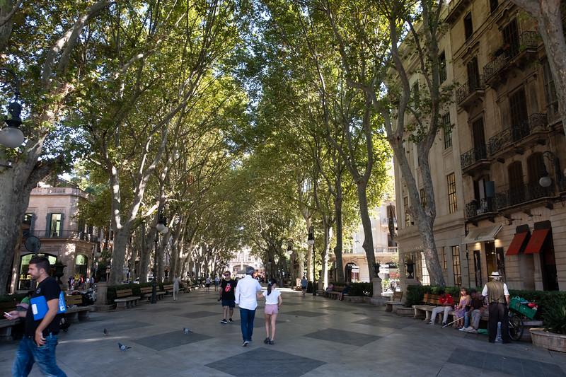 Palma de Mallorca-4.jpg