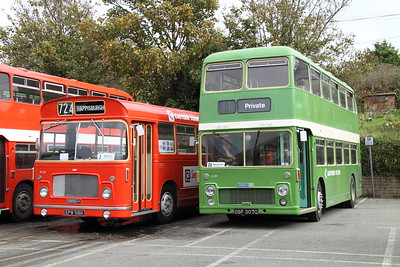 14th - 15thOct 2017 Isle of Wight Beer & Bus Weekend
