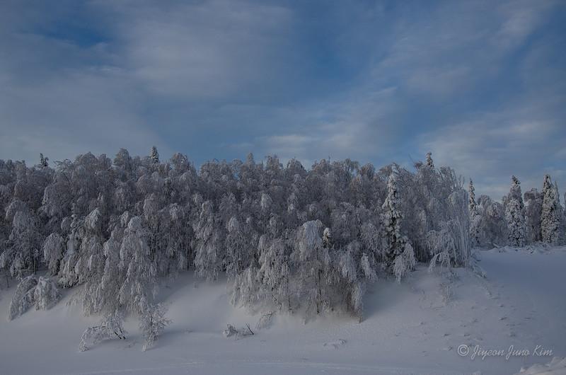 USA-Alaska-Arctic-Circle-2518.jpg
