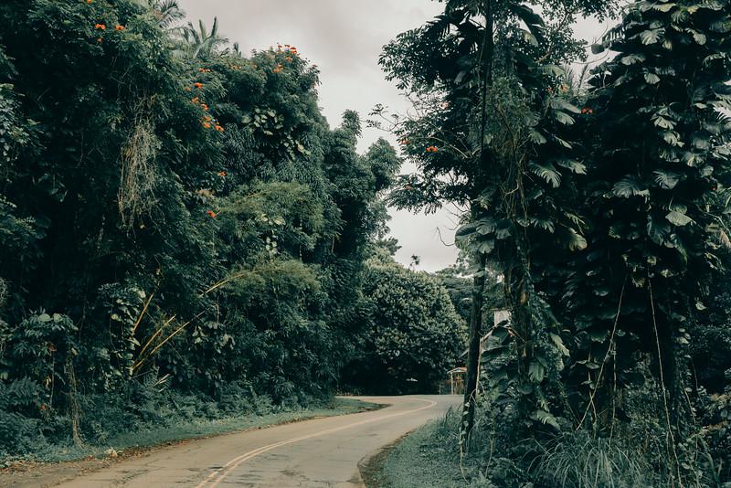 Hawaii20-364.jpg