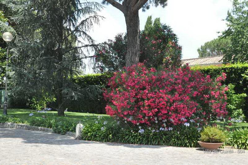 Villa dei Quintili - 004.jpg