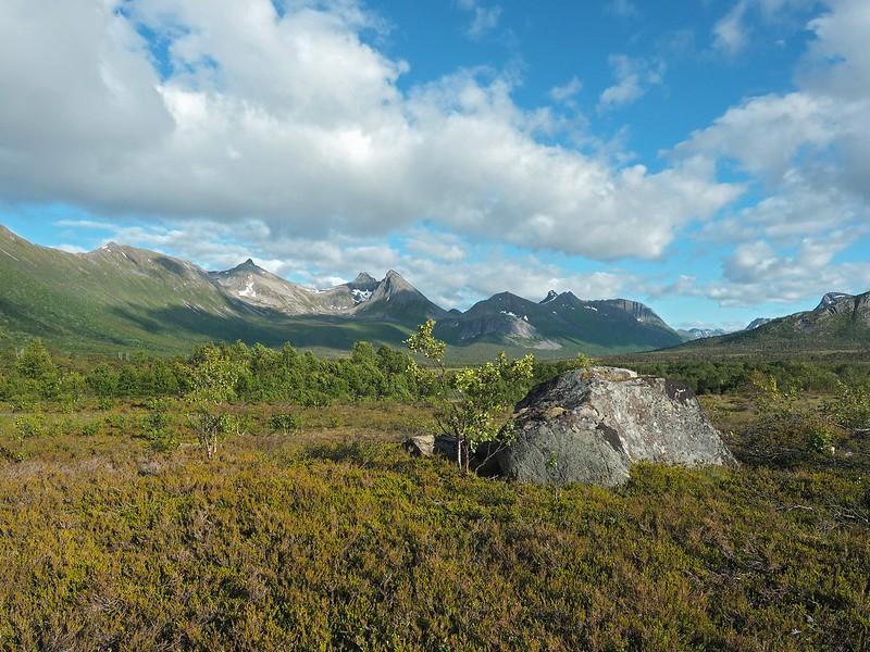 Forfjord 07-07-17 (28).jpg