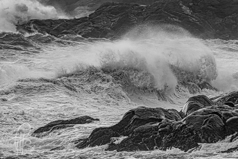 sm teddy waves_M4D8697.jpg