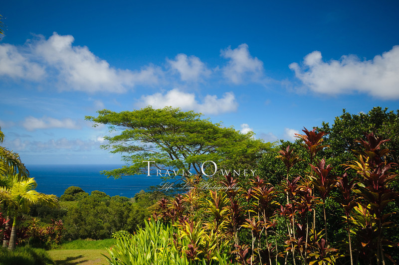 2010 Maui-166.jpg