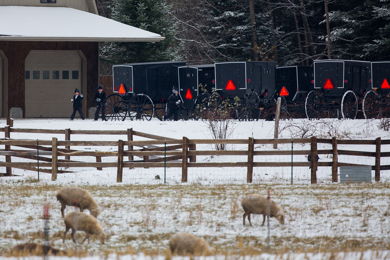 Amish Children having a snowball fight!