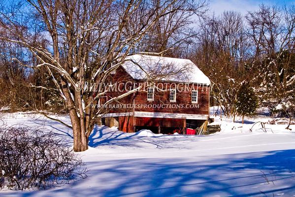 Winter Wonderland - 20 Dec 2009