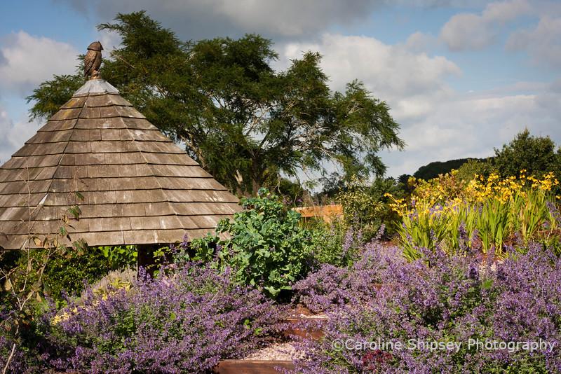 The Organic Gardens,Holt Farm-4860.jpg