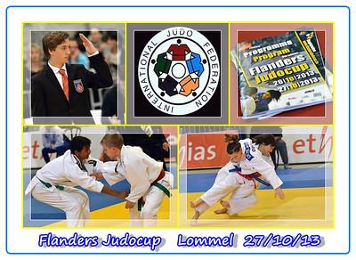 Flanders Judo Cup   Lommel  27/10/13