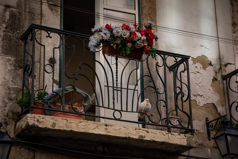 Lisbon-10.jpg