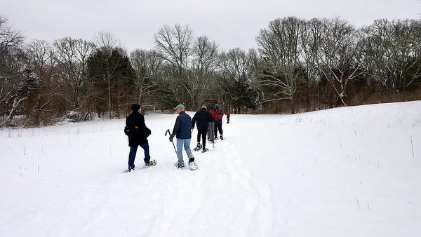 Snowshoe Walk - Feb 2017