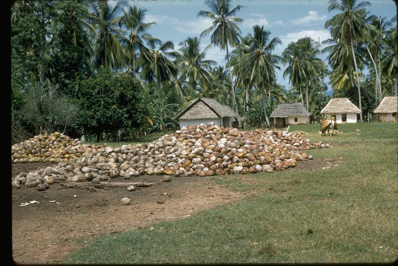 Travel-Zanzibar-1131-95.jpg