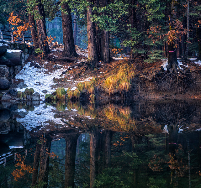 Reflection with color2_1.jpg