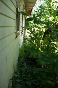 20.0 south yard environment