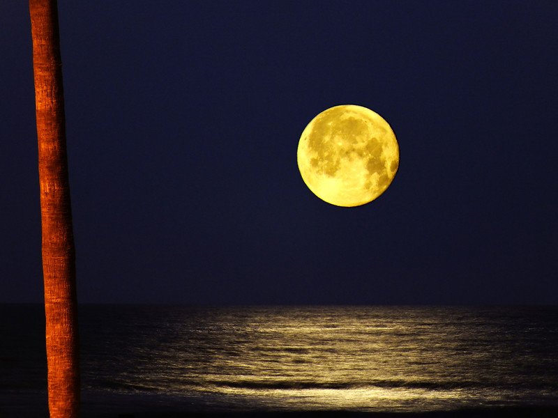 Full Moon Over Huntington Beach, California.jpg