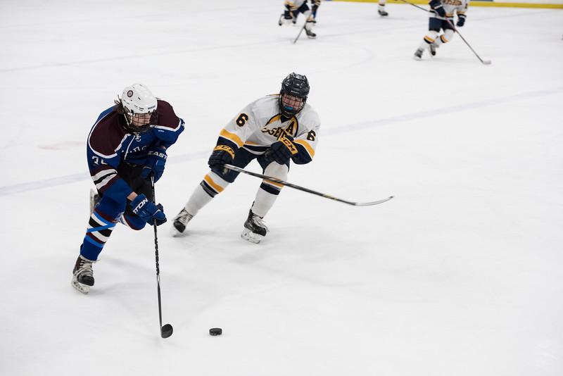 Wildcats Hockey 1-14-17_0297.jpg