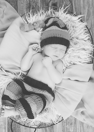 Ingle Newborn