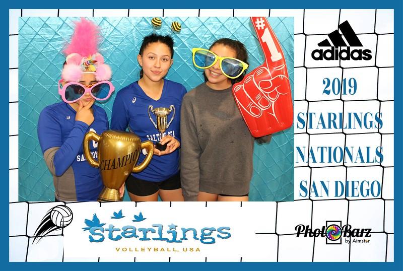 Starlings Volleyball (40).jpg